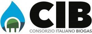CIB - Logo ORIZZONTALE